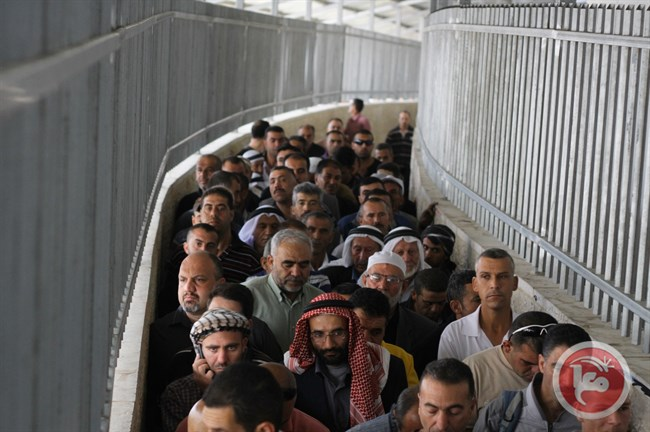 Hundreds of Palestinians wait in line at Checkpoint 300 in Bethlehem to cross in to Jerusalem.