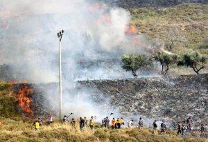 Palestinian olive farm burning. Burin Village near Nablus Yitzhar Settlement