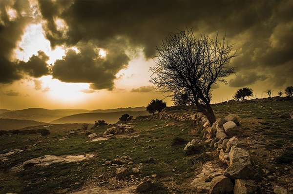 Fassuta is an Arab town on the northwestern slopes of Mount Meron in the Northern District of Israel, south of the Lebanese border. In 2005, the population of Fassuta was 2,900. Photo Shiham Abu Ayoub (Shayoub). Photo by Shiham Abu Ayoub.) See no. 4 below.